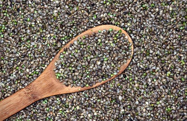 konopná semena.jpg